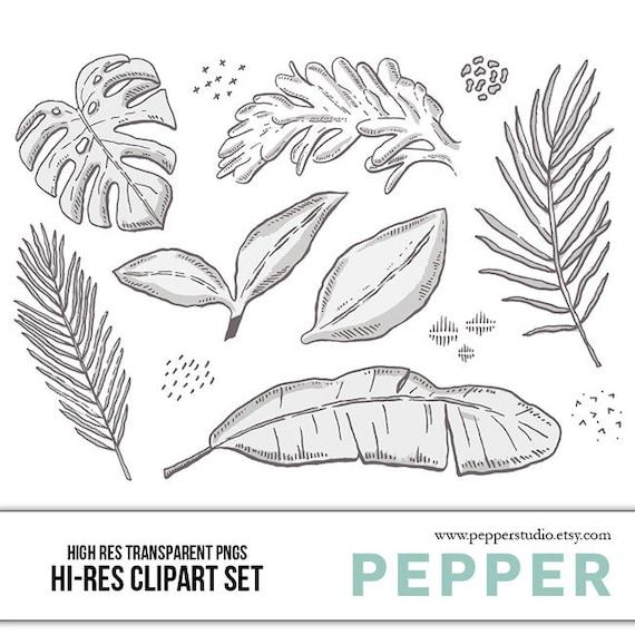 Leaves Doodle Clipart Set Hi Res Printable Leaf Icons Hand Etsy