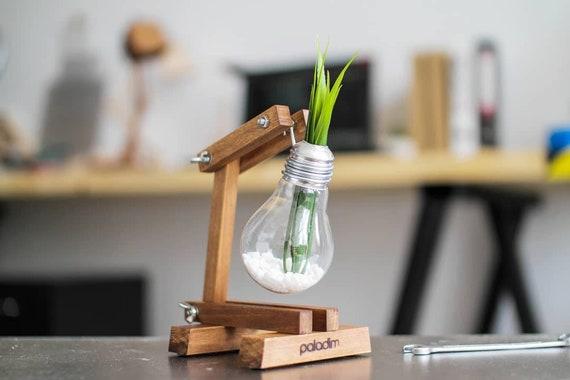 gl hbirne vase diy geniale diy idee f r pflanzen die gl hbirnen vase upcycling kaputte. Black Bedroom Furniture Sets. Home Design Ideas