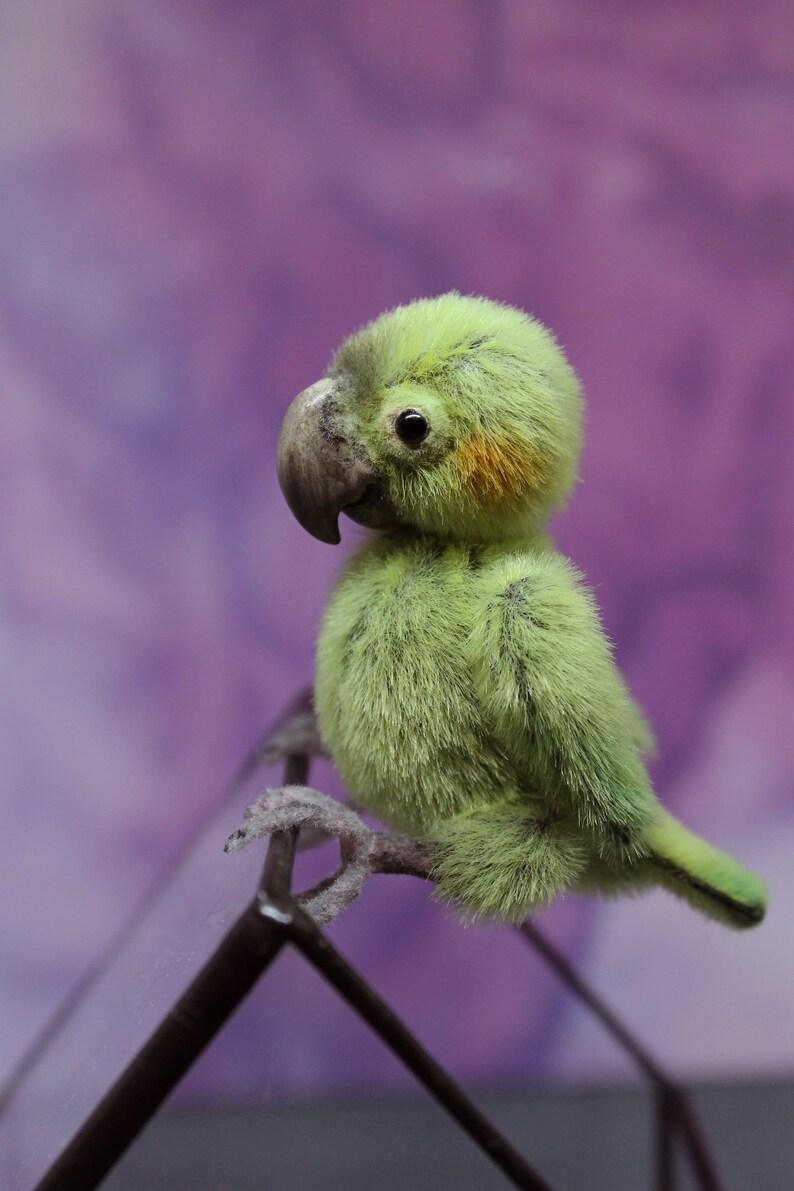 Macaw Miniature Doll Parrot Figurine Soft Toy Ooak Doll Cocktoo Bird Cockatiel Tropical D U00e9cor Mom
