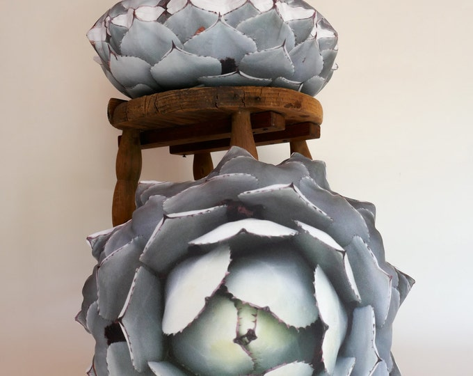 Succulent pillow Agave parryi var truncata 2-sided Agave