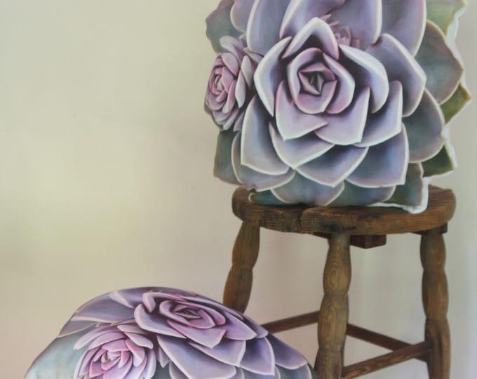 2-sided Echeveria PVN Succulent pillow