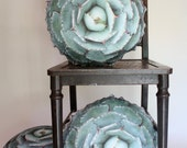 Agave Succulent decorative pillow made to order