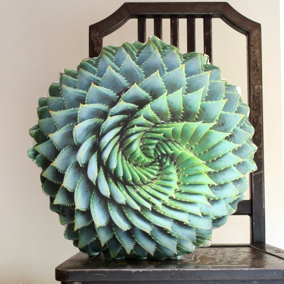 Spiral Succulent decorative pillow by Plantillo