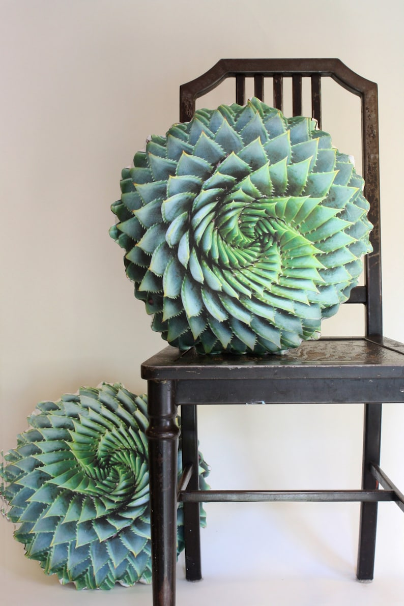 Spiral Succulent decorative pillow made to order Aloe image 0