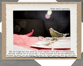 Life Lessons Budgie Greeting Card • Parakeet All Occasion Card • Blank Inside • Animal Tales Collection
