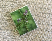 Wildflower note cards - set of 4 with envelopes