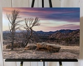 Wild Wyoming sunset