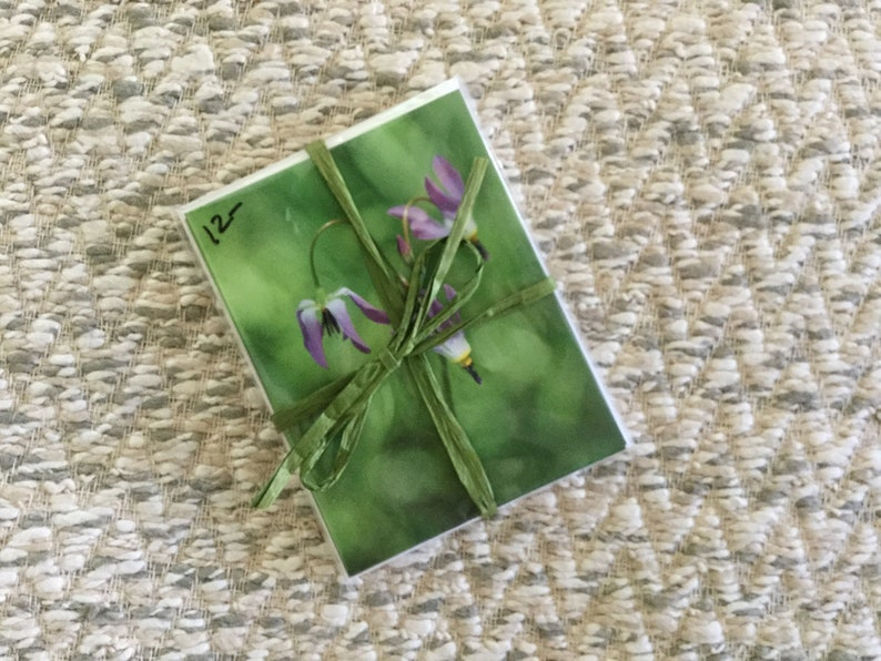 Wildflower note cards  set of 4 with envelopes image 0