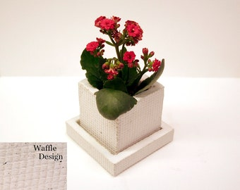 """3"""" concrete pot modern for succulent, cactus or any small houseplant"""