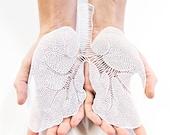 Anatomical Lungs Laser-Cut Papercutting Artwork
