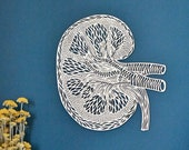 Anatomical Kidney Lasercut Wooden Artwork