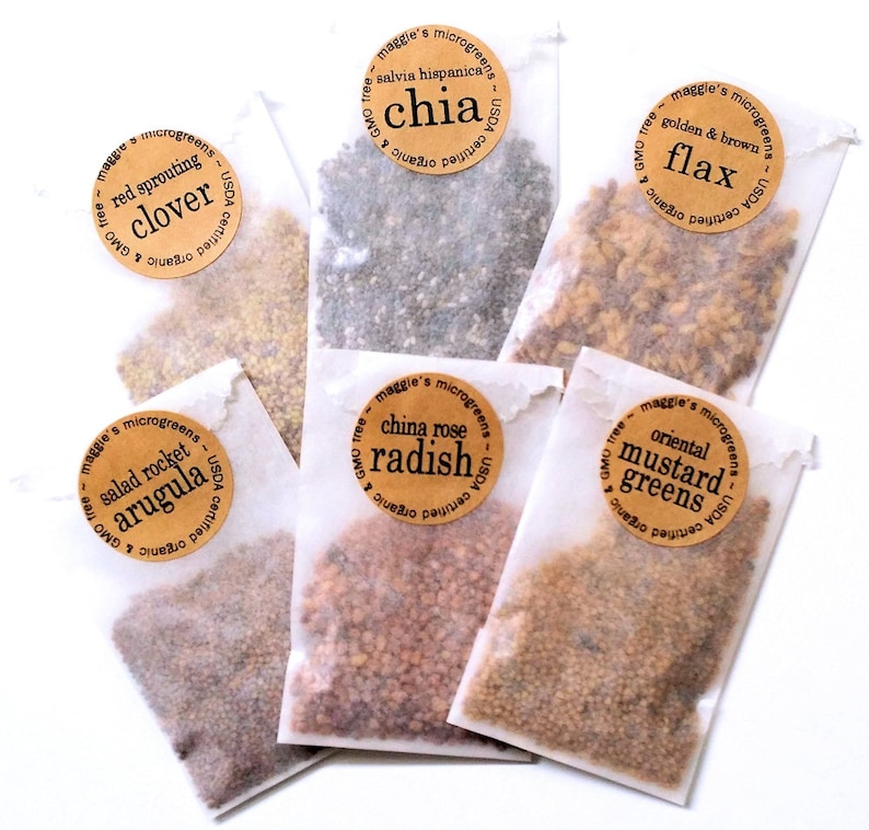 REFILL Seed Packets Set of 6  DIY Microgreens Indoor Garden image 0