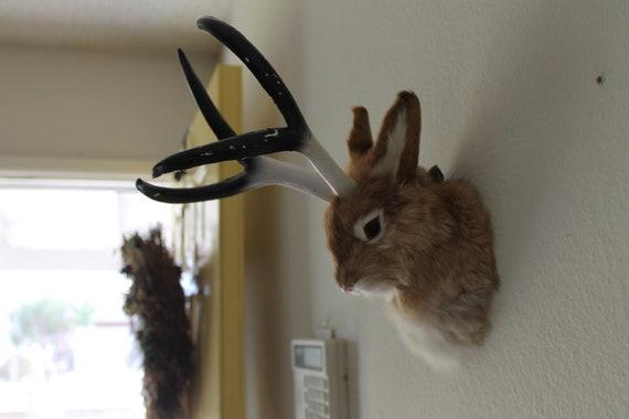 Brown JACKALOPE Head Mount Rabbit Realistic Animal Figurine Cabin Decoration