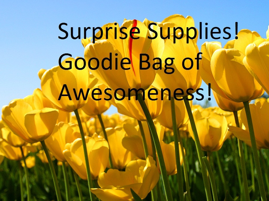 Goodie Bag Of Awesomeness No Coupon Codes