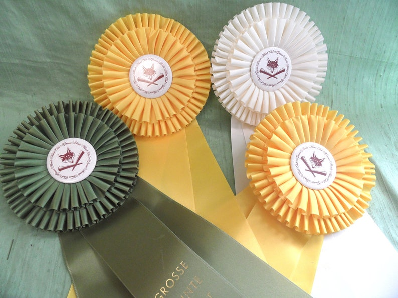 collage Four large horse prize ribbons   6 inch double rosette  yellow white green  assemblage collar  dressage