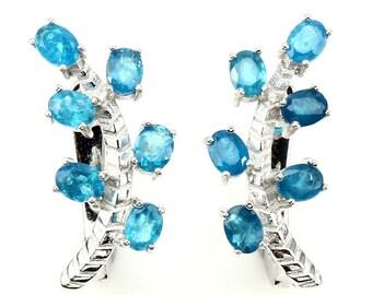 2.75ctw Paraiba Blue Apatite 925 Sterling Silver Earrings