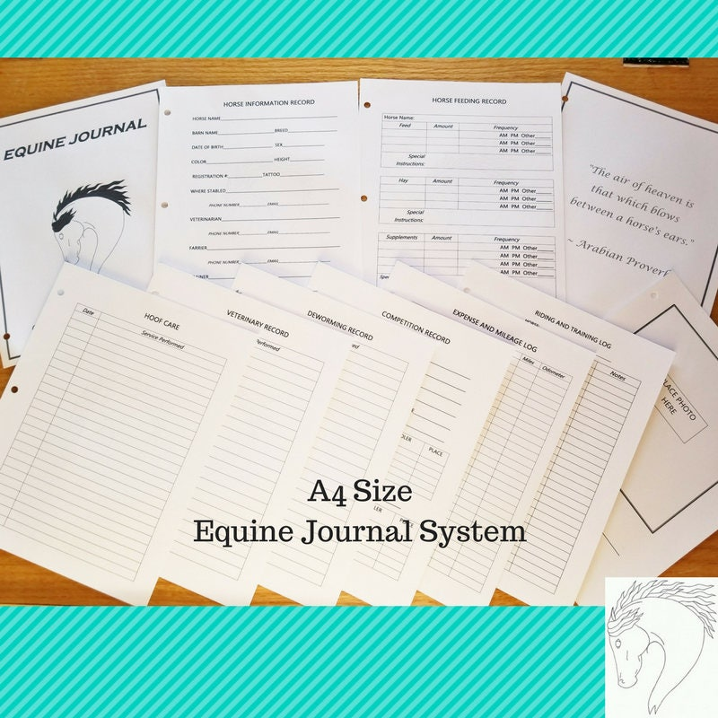 equine journal system a4 size horse record keeping planner horse