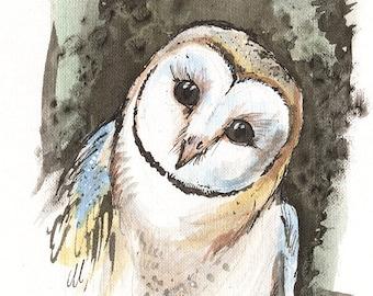 Barn owl, bird of prey, wildlife, nature, original ink painting on paper