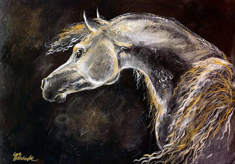 Grey arabian horse equine art equestrian  horse portrait image 0
