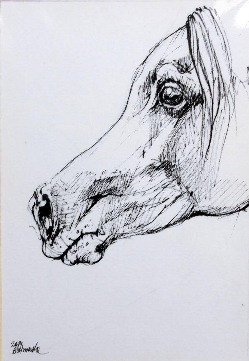 arabian horse equine art horse portrait equestrian cheval image 0