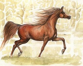 Chestnut arabian horse portrait original pen and watercolour painting