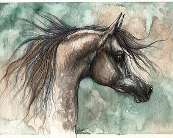 Dark grey arabian horse, equine art, equestrian, original pen and watercolor painting