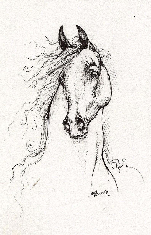 Arabian horse equine art equestrian portrait  original pen image 0