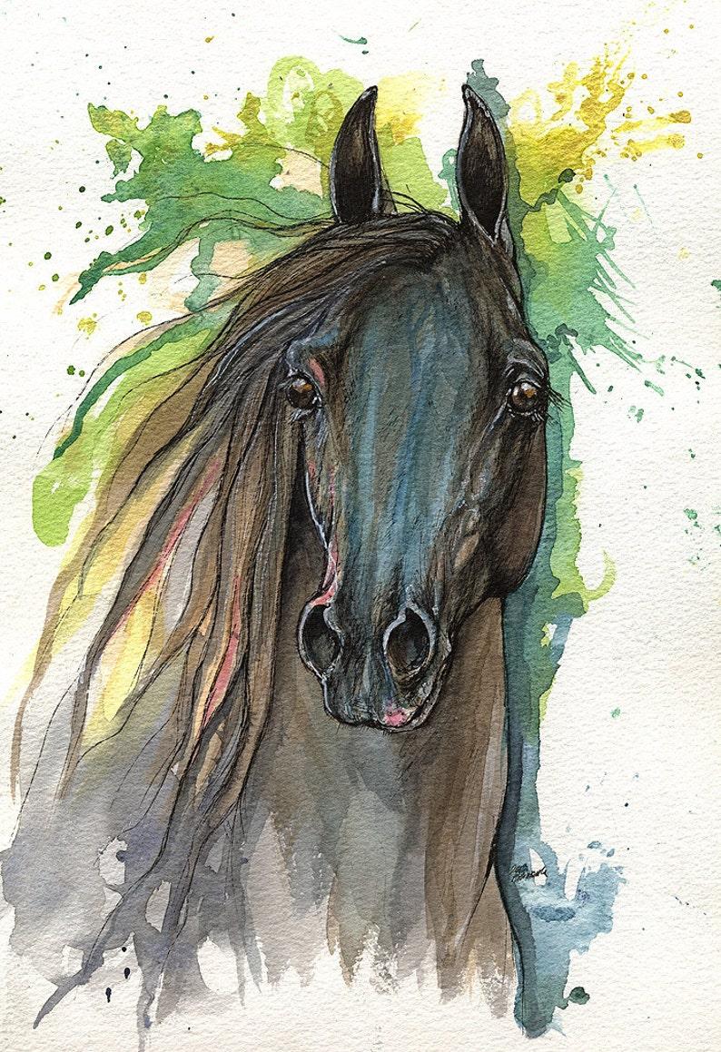 Black arabian horse equine art equestrian horse  portrait image 0
