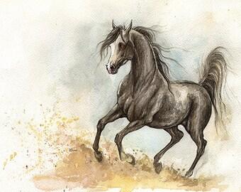 original pen and watercolour painting of a Dark grey arabian horse