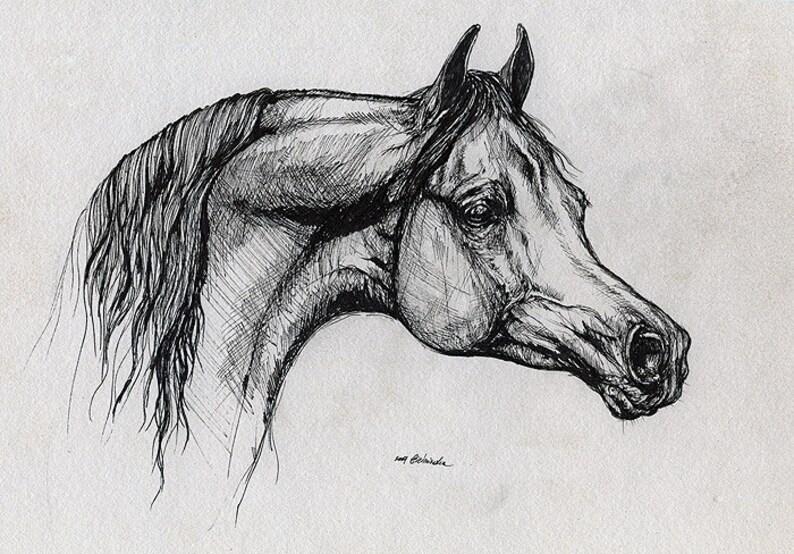 Bay arabian horse equine art equestrian  original pen image 0
