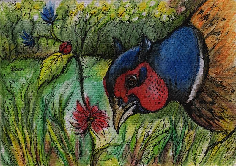 Original pen and watercolour pencils drawing of a pheasant image 0