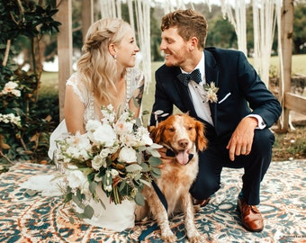Navy Dog Bow Tie With Matching Leash and Collar - Marine - Dog in Wedding By Poppy Parker