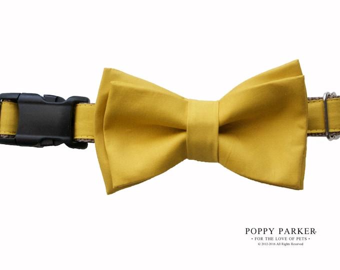 Layered Dog Bow Tie - Mustard Yellow