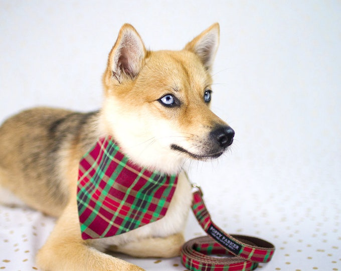 Christmas Plaid Dog Bandana With Matching Collar - Dog In Christmas Photos - Holiday Photo Prop