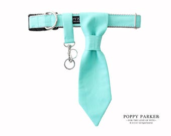 Customizable Wedding Dog Tie - Aqua Teal Spa Shown - Dog Ring Bearer - Dog Of Honor - Best Dog - Choose Your Color