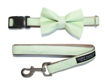 Green Dog Bow Tie Matching Dog Collar Dog Leash - Succulent Sage