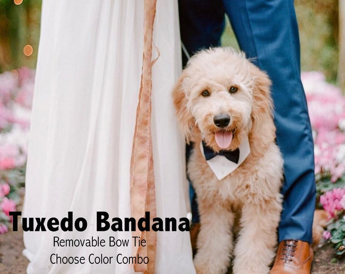Wedding Dog Tuxedo Bow Tie Bandana With Matching Bow Tie and Collar - Choose Your Color - Black Tie Dog