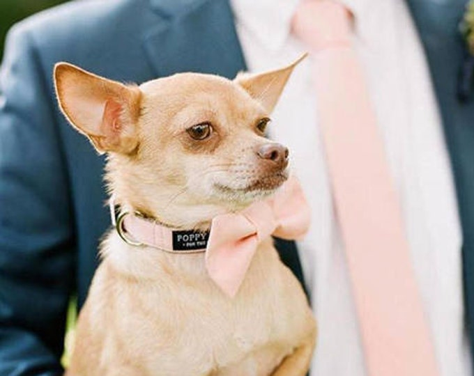 Blush Pink Dog Bow Tie With Matching Leash - Dog in Wedding By Poppy Parker