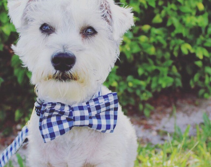 Dog Bow Tie in Navy and White Gingham - By Poppy Parker Market