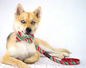2019 Christmas Stripe Dog Layered Bow Tie With Optional Leash - Christmas Party - Holiday Photo