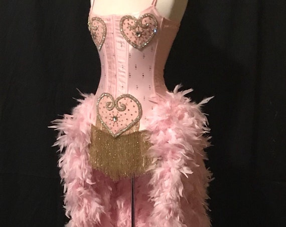 Pick Size XS-3X-Movie Inspired Pink Showgirl Saloon Girl Moulin Burlesque Costume w/Feather Train