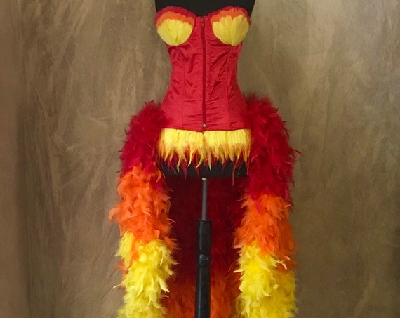 Custom Fire Phoenix Flame Feather Showgirl Moulin Burlesque Costume w/Feather Train