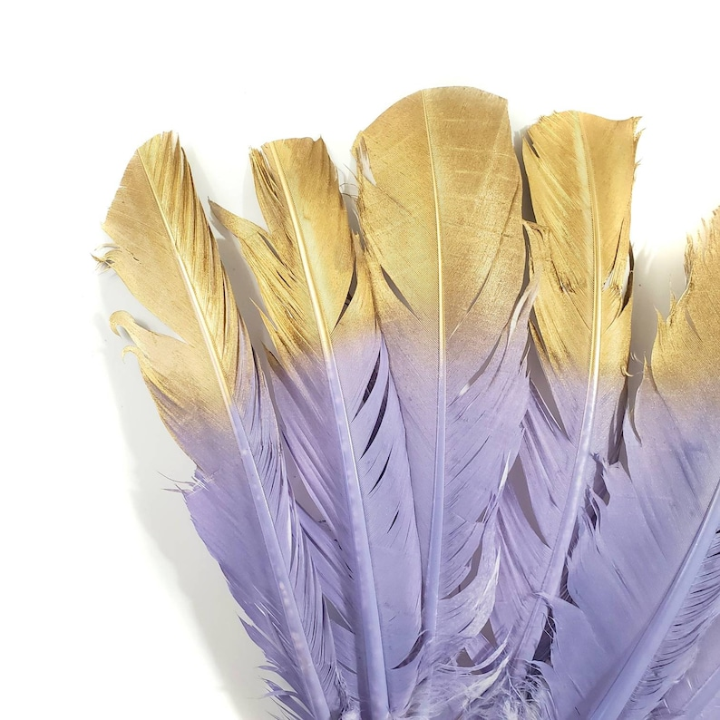 Turkey Quill Feathers Lavendar Purple and Gold Turkey Rounds Secondary Large Wing Quill Feathers 6 Pieces