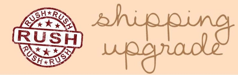 Expedited Order  Upgrade  for Womens Shoes Only image 0