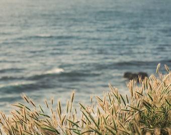 Coastal decor, california photography, california coast, palos verdes, neutral colors, gray decor, large wall art, coastal print pacific