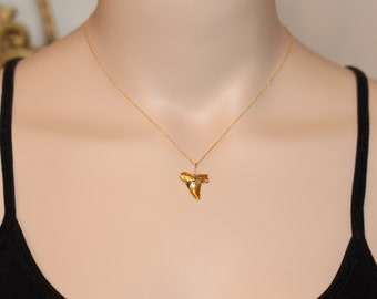 Gold shark tooth necklace - shark tooth necklace - a 22k gold plated sharks tooth on a 14k gold vermeil chain