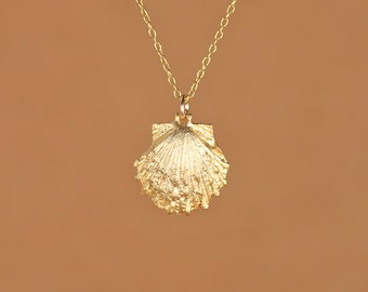 Gold shell necklace - beach necklace - moonstone necklace - a 22k gold overlay sea shell hanging from a 14k gold vermeil chain