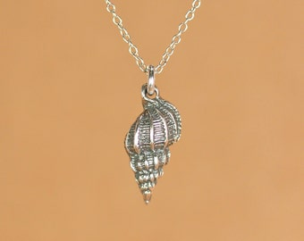 Shell necklace - silver shell necklace - spiral shell - conch shell - gold shell necklace - a delicate shell on a 14k gold vermeil chain