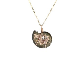 Ammonite necklace - fossil - shell necklace - infinity - a fossilized pyrite ammonite shell hanging on a 14k gold vermeil chain