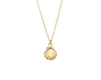 Tiny shell necklace - gold shell necklace -  sea shell necklace - scallop necklace - a tiny gold clam shell on a 14k gold vermeil chain